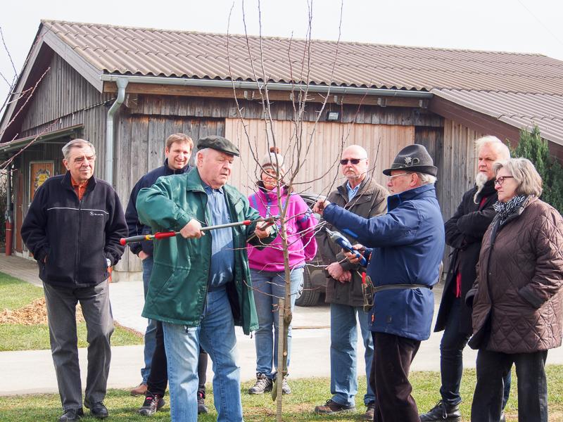 OGV Bünzwangen Schnittkurs für Anfänger 19.03.2016